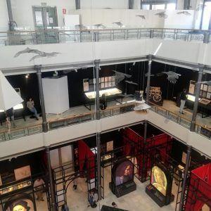 localizacion-evento-palacio-alhajas-madrid-14
